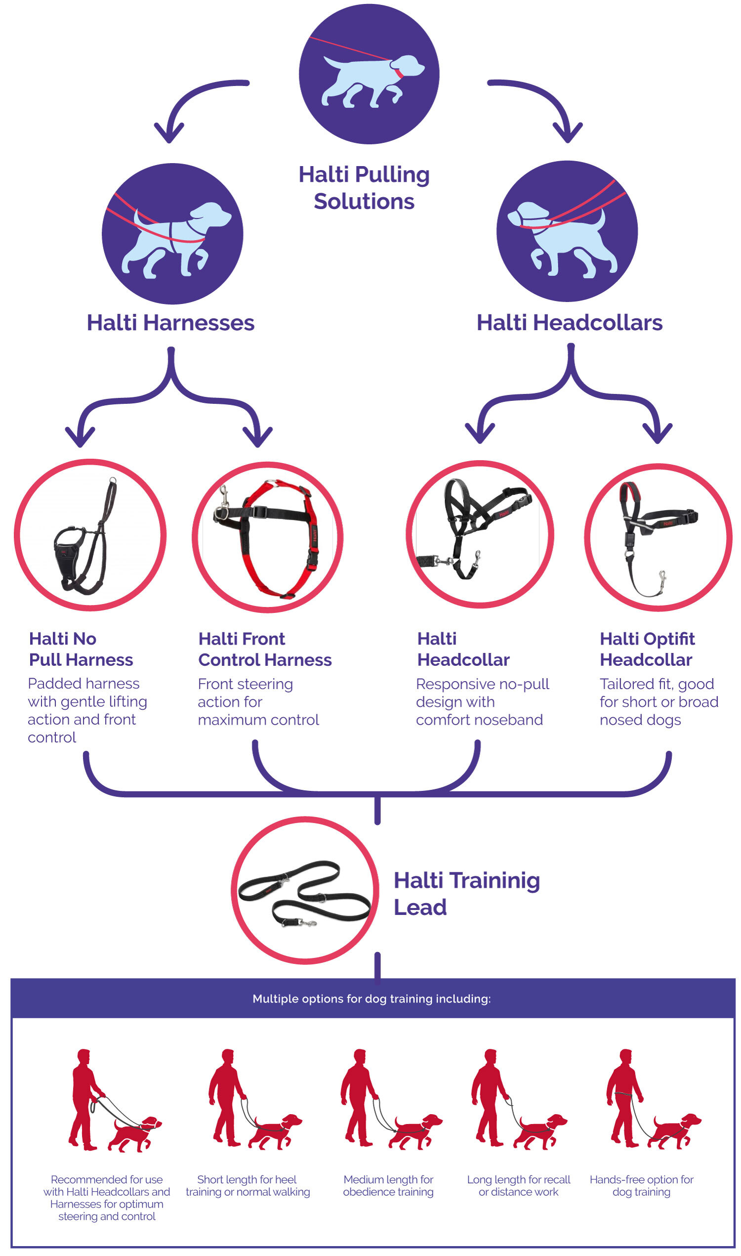 Which is right for me, a Halti headcollar or a Halti Harness