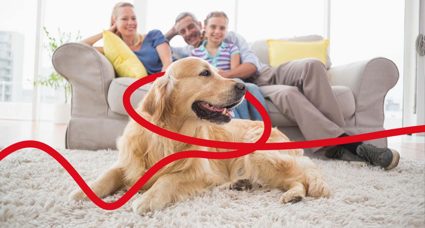A Labrador sat on the floor in front of a family on a couch