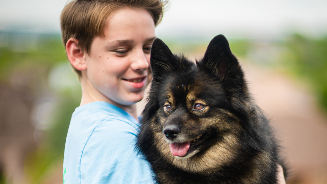 A Pomeranian dog being held by a young lad