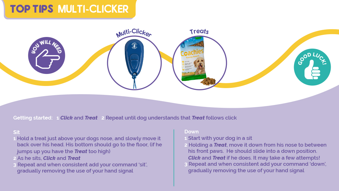 Top tips for using the Company of Animals Multi Clicker
