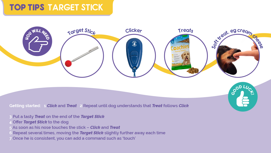 Top Tips for using the Company of Animals Target Stick